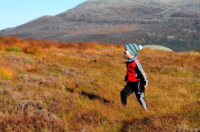 Emil på fjellet